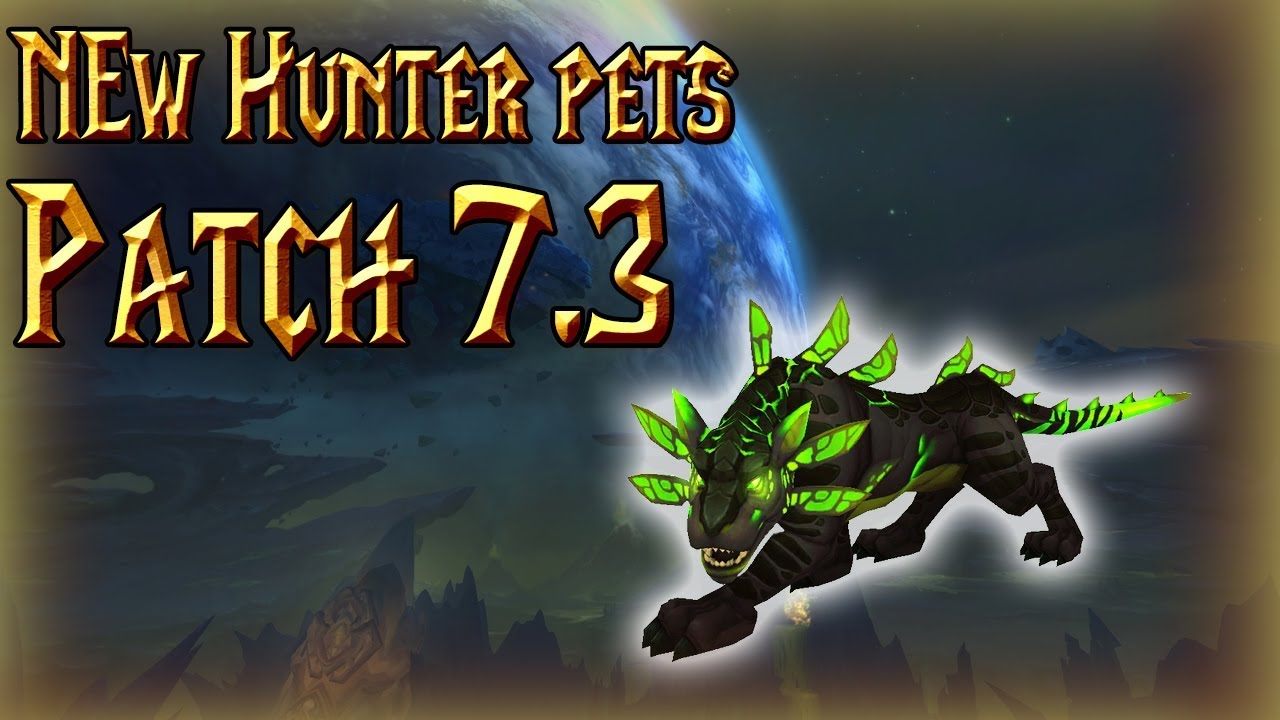 New Hunter Pets In 7 3 Panthara And More World Of Warcraft Legion Youtube