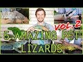 Five MORE of the Best Pet Lizards You Could Possibly Get!