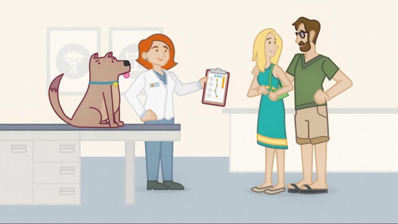 Veterinarians : Banfield Pet Hospital® provides superior pet