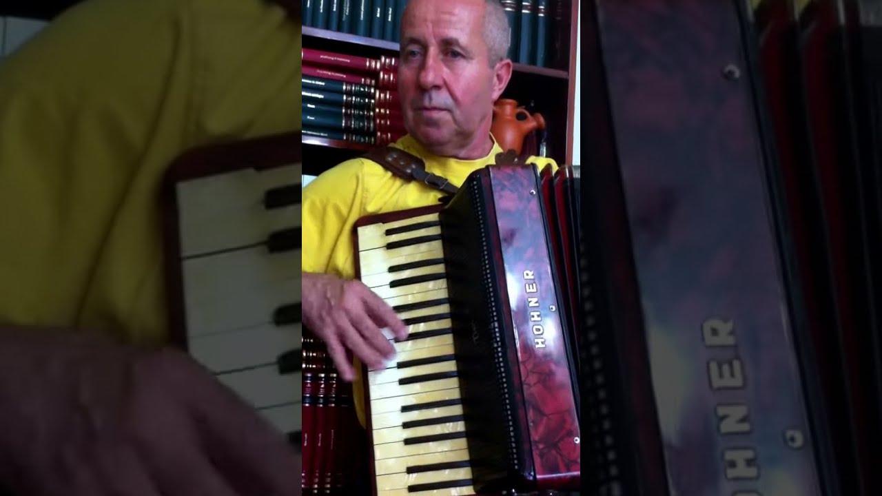 Muzica De Petrecere De Acordeon Cu Ing Lazarica Din Focsani Youtube