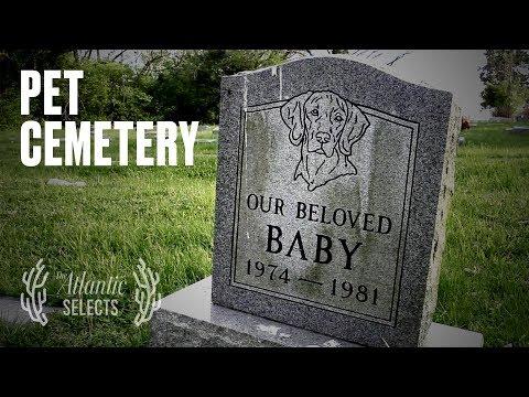 Julius Caesar Was Buried In A Pet Cemetery (ft. Yo La Tengo)