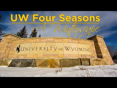 UW Life || Four Seasons: A Winterscape