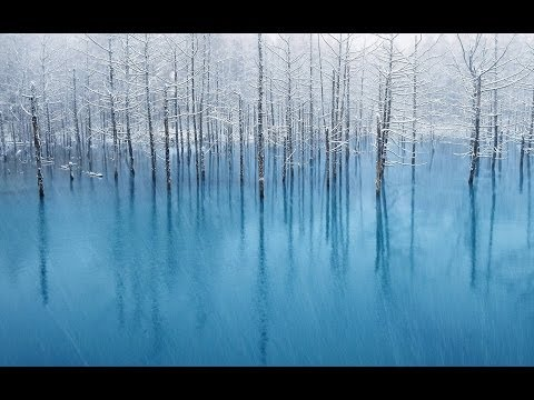 Frozen Experience | Ambient Electronic, Ambient, Minimalism