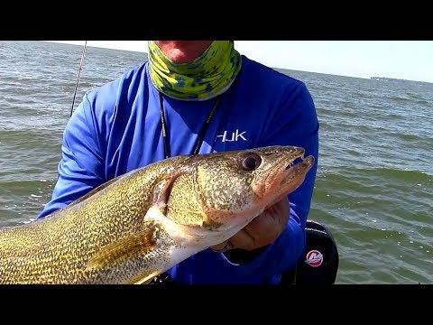 Trolling For WALLEYES On Saginaw Bay With Planer Boards