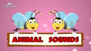 Песня на английском языке для детей про животных.