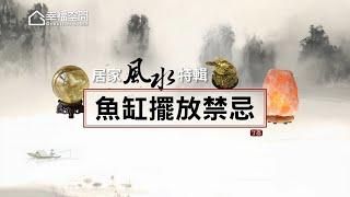 【居家風水特輯】魚缸擺放禁忌 [HD]