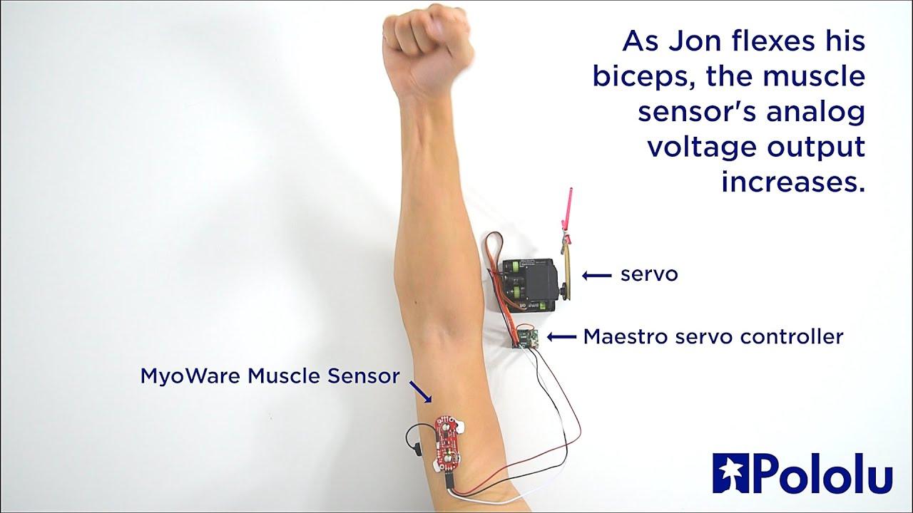 Myoware Muscle Sensor Demonstration With Maestro Servo Controller 555 150x150 Motor Control The