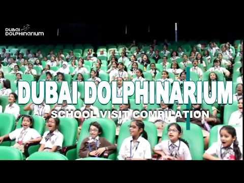 Dubai Dolphinarium School Visits