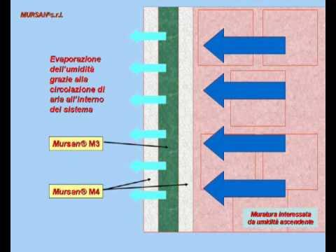 Mursansrl.it : Prodotti e soluzioni contro lumidità e le muffe sui ...
