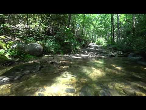 Sarah's Creek Rd. || JL RUBICON || Clayton GA.