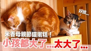 米香-好像把小貓養太胖了-米香的母親節蛋糕-貓副食食譜-好味貓鮮食廚房ep146