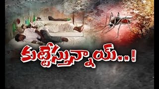 Mosquitoes Creating Mayhem |  Adilabad | A Report