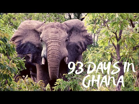93 Days in Ghana
