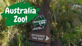 Australia Zoo Wildlife Adventure Visit Queensland Australia