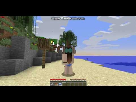 The summer (Minecraft Roleplay) ep 3