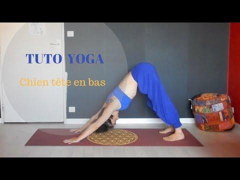Yoga tutoriel - Comment faire la position du chien tête en bas