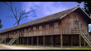 Vernacular Architecture Series - Dayak, Indonesia