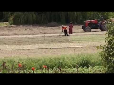Women on Farms