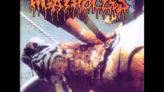 Agathocles - Black Ones (Poem) / Systemphobic