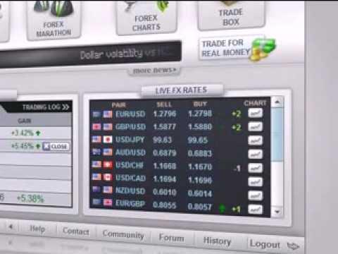 Best Forex Trading Platform – eToro