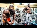 FREE-WEIGHTS vs MACHINES | Kali Muscle