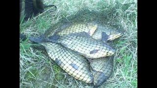 Рыболовная прикормка.  Более 47 лет он ловил на неё. А я довел до совершенства. thumbnail