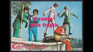 Il campo delle fragole, Camaleonti (1974) , by Prince of roses