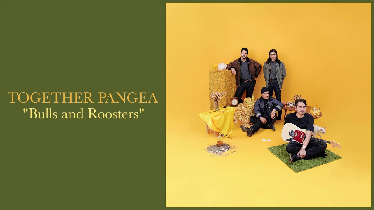 together-pangea-bulls-and-roosters-together-pangea