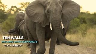 Ten Walls - Walking With Elephants [D.O.A Remix]
