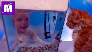 Акваферма выращиваем салат в аквариуме Aqua Farm grow crops in an aquarium with fish(Распаковка познавательного набора Акваферма, покупаем рыбку и выращиваем проростки зерновых культур Unpacking..., 2016-06-11T13:53:13.000Z)
