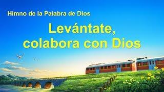 Canción cristiana | Levántate, colabora con Dios