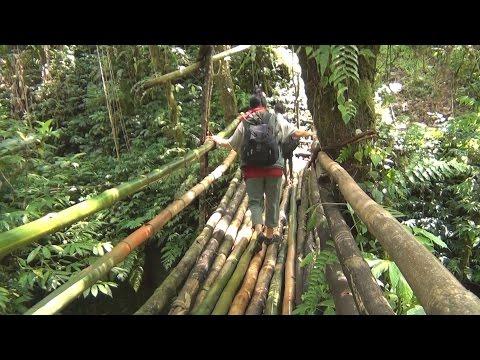 Vanuatu 1 Espiritu Santo