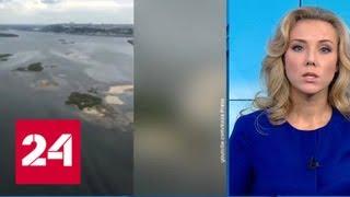 Оздоровление Волги: реку сделают в 9 раз чище - Россия 24