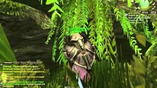 World of Dragons обзор бесплатной онлайн игры