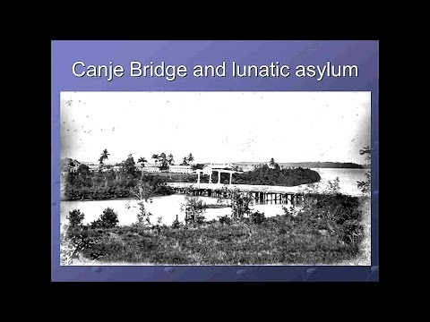 Migration and Mental Illness in the British West Indies, 1838-1900