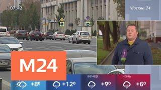 Смотреть видео Пасмурная погода ожидает жителей столичного региона 3 октября - Москва 24 онлайн
