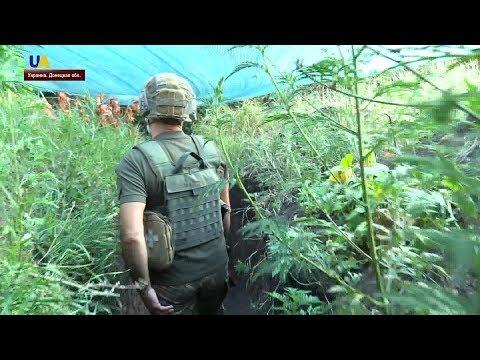 """""""Хлебное перемирие"""" на Донбассе"""