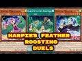 Yugioh - Harpie's Feather Roosting Duels (Deck Download In Description)