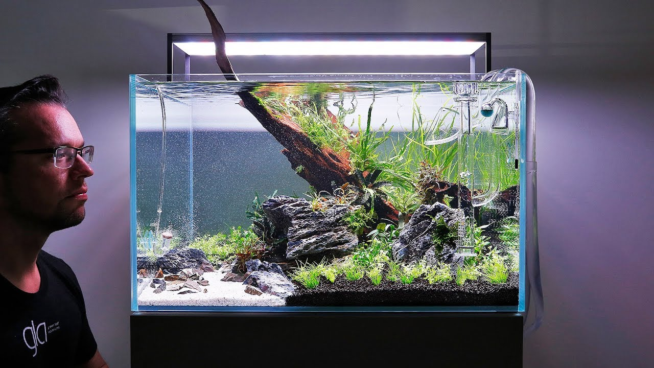 HOW TO set up a Beautiful Nature Aquarium Aquascape - YouTube
