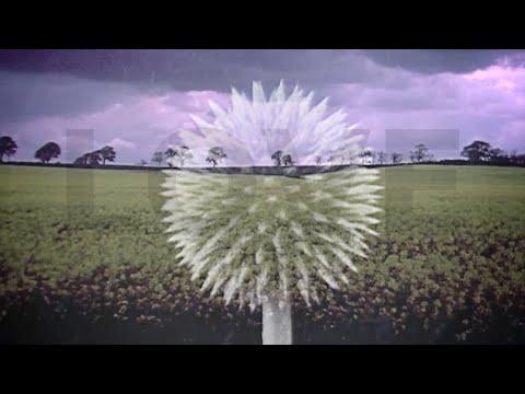Imagine LOVE 528hz Resonance Meditation (DNA Mix)