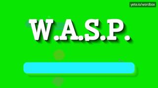 Download lagu W A S P HOW TO PRONOUNCE IT MP3