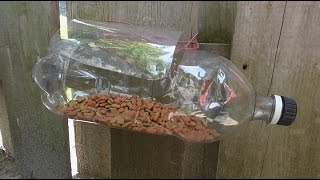 stray cat and dog feeder / water bowl from plastic bottles