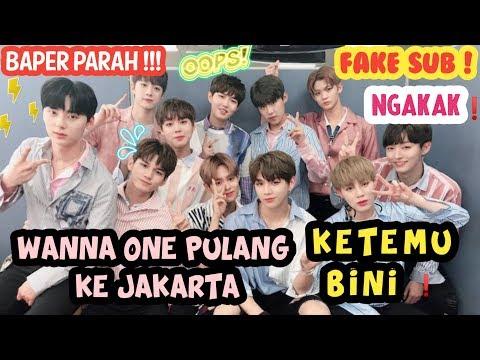 [FAKE SUB] OKAY WANNA ONE DI JAKARTA PULANG KAMPUNG😅    NGE-HALU WITH RB ENTERTAINMENT 💃