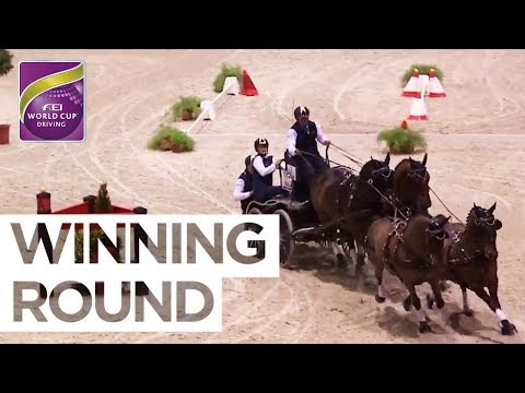 Boyd Exell's dominant run to his 8th World Cup Title | FEI World Cup™ Driving