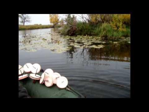 рыбалка на кружек осенью