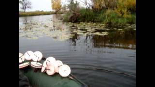 рыбалка осенью на  кружки(осення рыбалка на кружки в претоке десны., 2013-10-14T18:21:44.000Z)