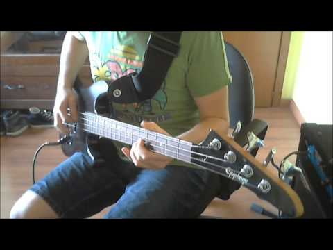 【THE WAY I FEEL】»RaNcid bass cover«