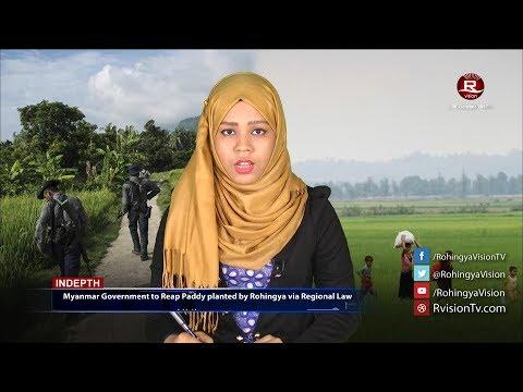 Rohingya Daily News 05 October 2017 News