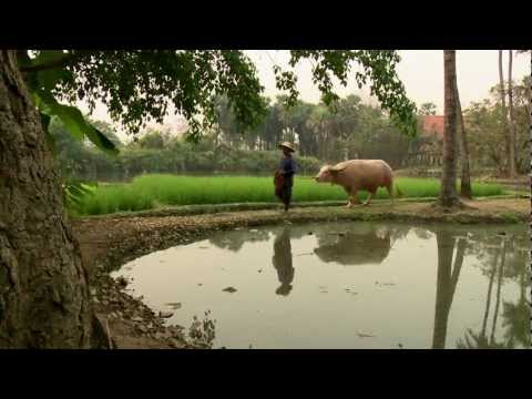 Thumbnail: Green and Eco Tourism Thailand