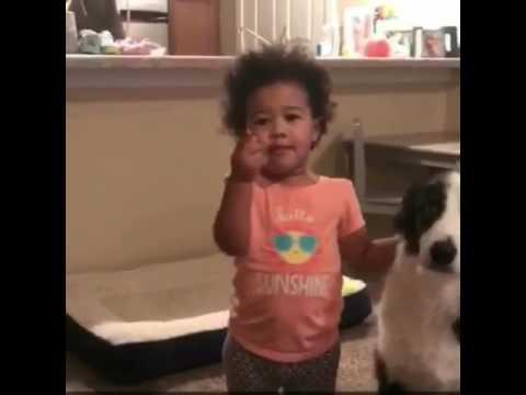 Sassy Toddler tells on dog